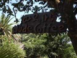 Wude Coffee